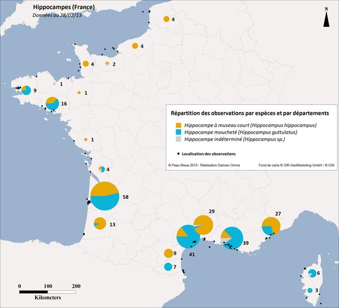 Carte recensement des Hippocampes 2013