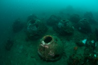 "Artificial ""reef balls"" (Lembeh Resort)"